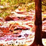 Copper Falls 172